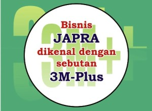 System Bisnis JAPRA
